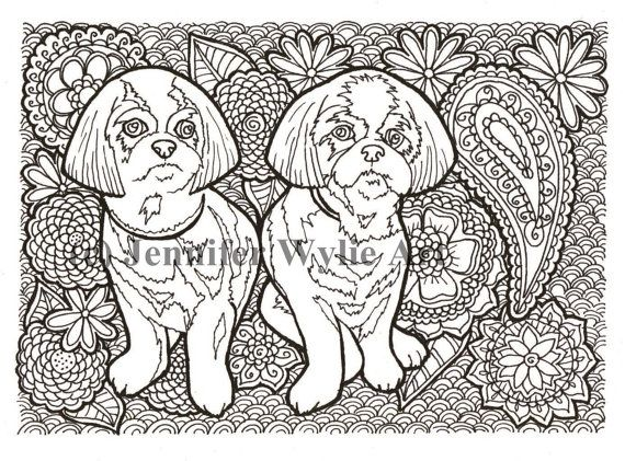 shih tzu adult coloring page colouring page coloring book printable adult coloring hand drawn colour therapy instant download print - Shih Tzu Coloring Pages