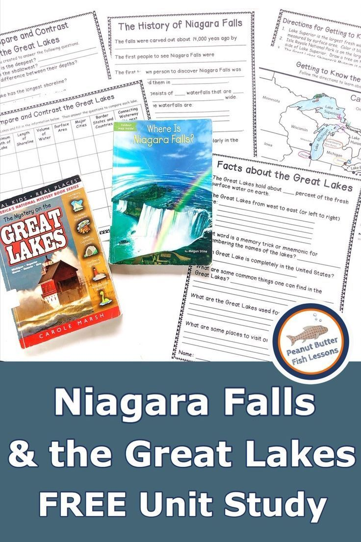 Photo of Niagara Falls and the Great Lakes FREE Unit Study – peanut butter fish lessons