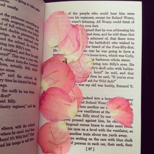 Pressed Roses Petals in a Book | Pressed flowers, Petals, Rose petals