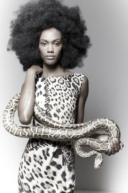 Black Woman Mimi Roche With Snake  Snake Girl, Black -8067