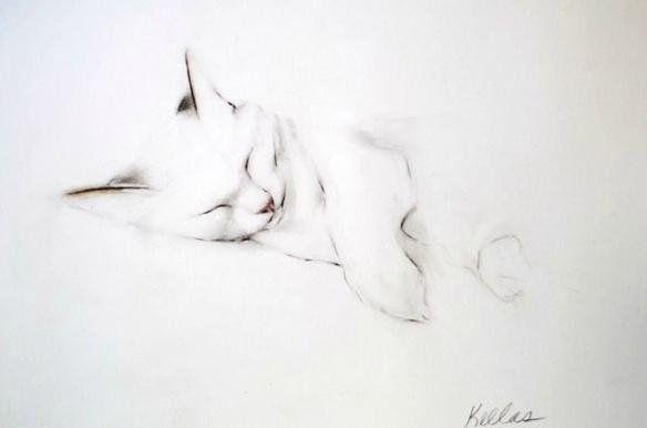 kellas campbell cats - Αναζήτηση Google