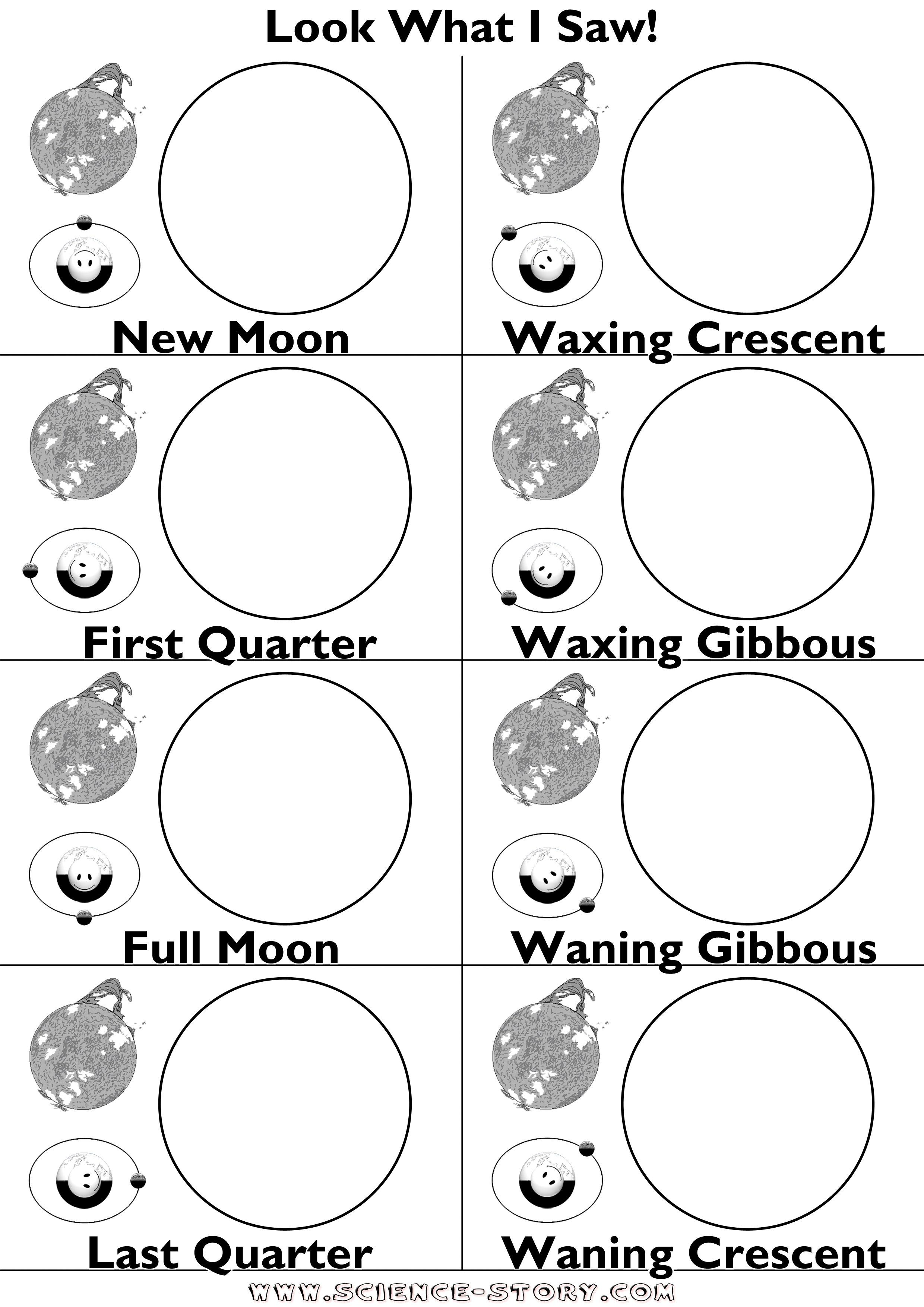 Phases Of The Moon Worksheet The Best Worksheets Image