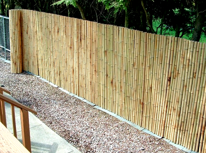 Bamboo Over Chain Link Fencing Backyard Fences Landscaping