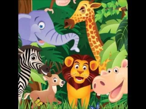 Sonidos De La Jungla Para Niños Parte 1 Música Y Animales Youtub Animales Salvajes Para Niños Animales De La Selva Cuentos Infantiles De Animales