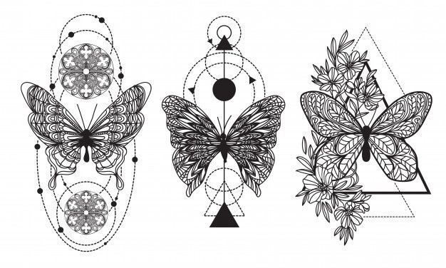Photo of Tattoo Art Butterfly Hand Drawing And Sketch With Line Art Illustration
