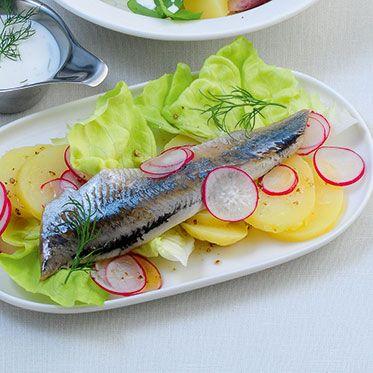 Friesischer Salat mit Matjes