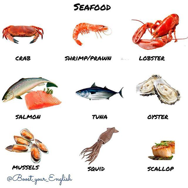 Do you like seafood? #crab #shrimp #prawn #lobster #salmon #tuna #oyster #mussels #squid # ...