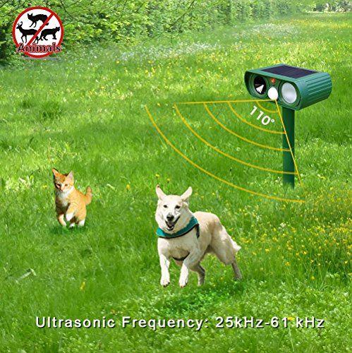 ultrasonic dog fence