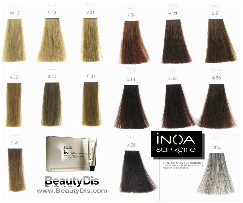 Loreal Inoa Hair Color Chart 181788 L Oreal Professionnel Inoa Prototypal Loreal Inoa Supreme Color Chart In 2020 Hair Color Chart Salon Hair Color Loreal Hair Color