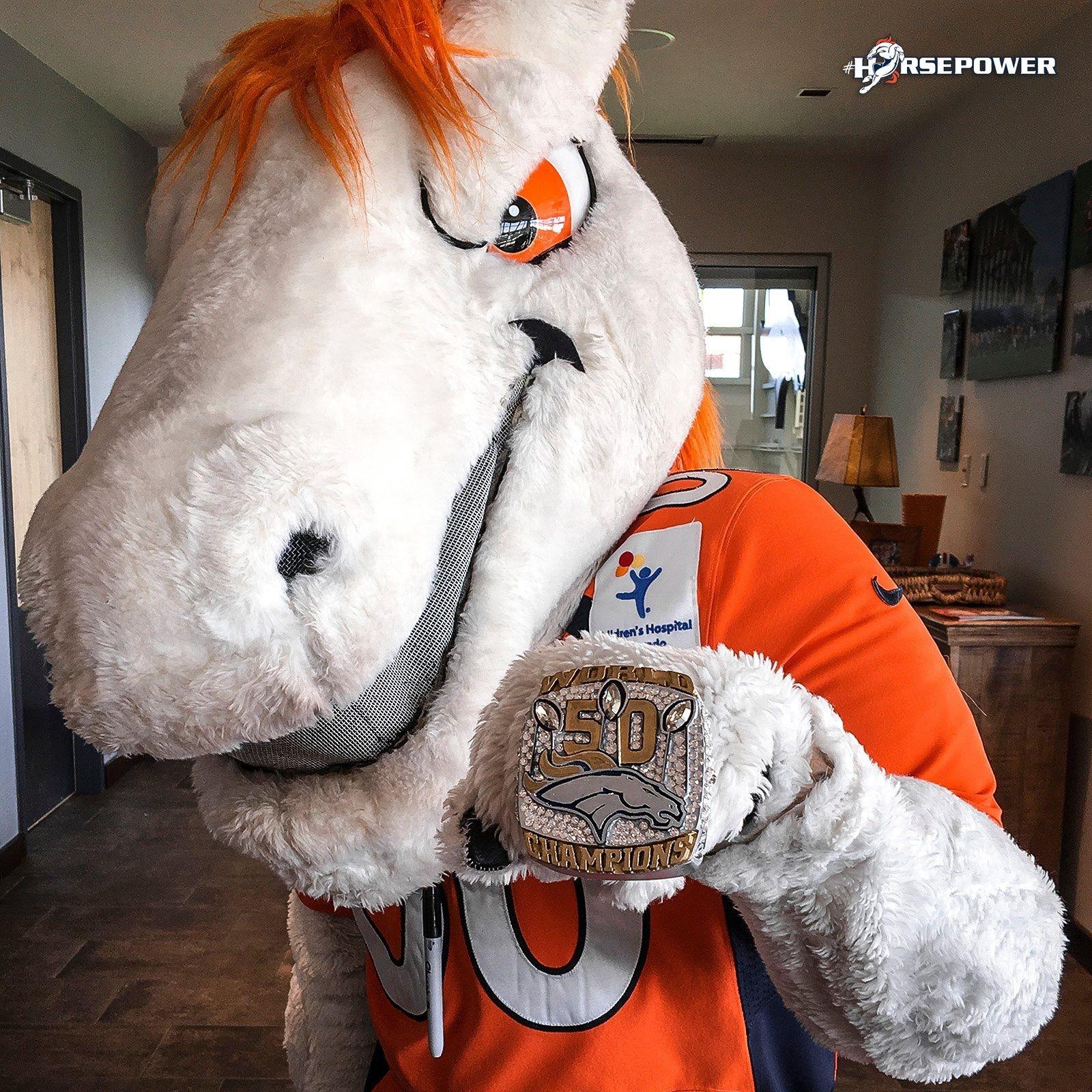 Pin by Stephanie Wood Smith ჱܓ on My Broncos! | Denver ...