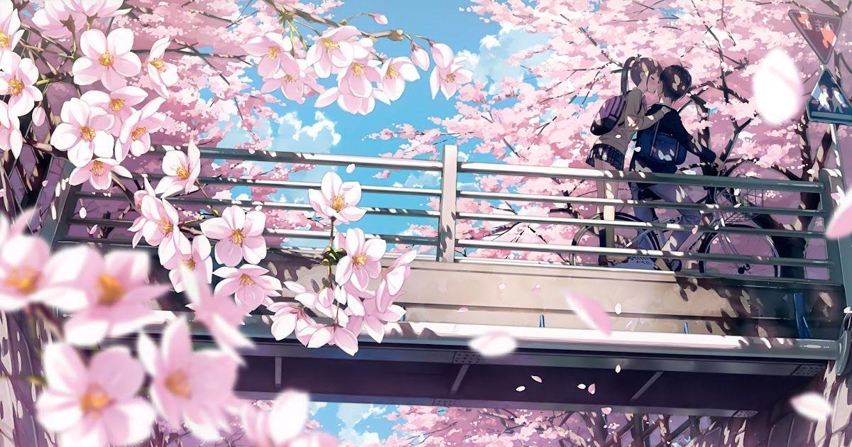 Pin By Zane Cardona On 9ud In 2020 Anime Cherry Blossom Cherry Blossom Wallpaper Cherry Blossom Drawing