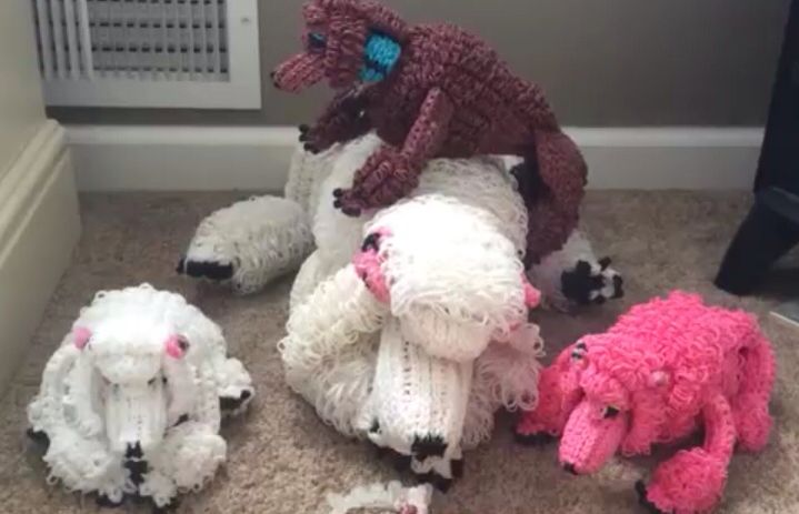 Courtney Nicole S Rainbow Loom Poodles And Baby Poodles Rainbow