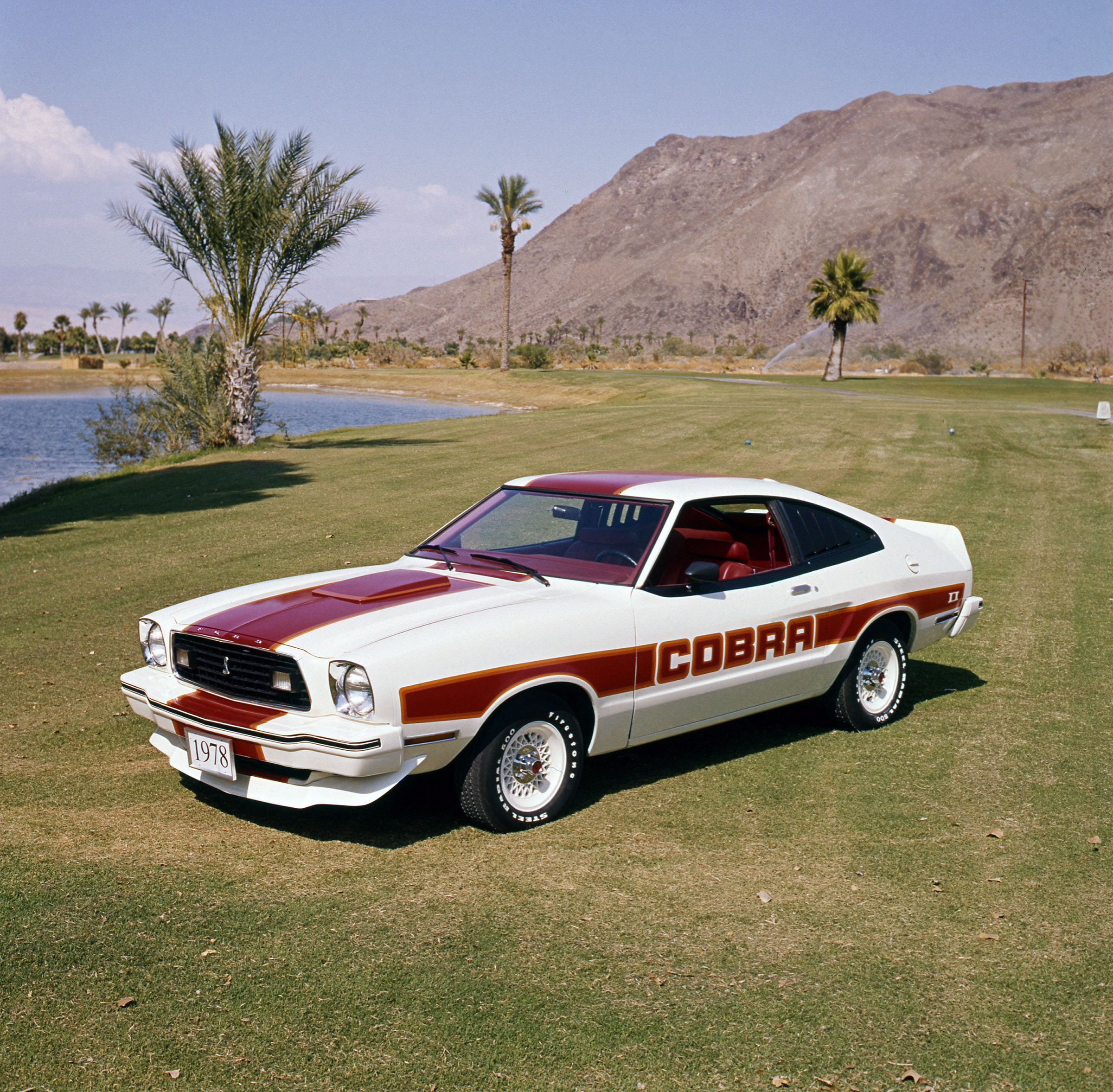 1978 ford mustang cobra ii i had this car from 1979 to 1982 i had