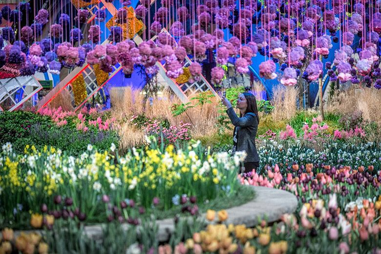 Your Complete Guide to the Philadelphia Flower Show