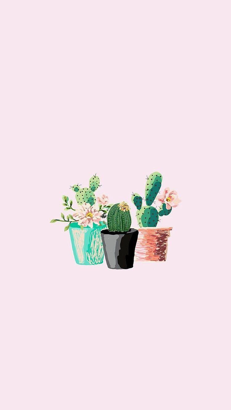 Cactus Cacto Papel De Parede Click Here To Download Cute Wallpaper Pinterest Click Here To Download Cactus Cacto Papel Kertas Dinding Tanaman Hijau Kaktus