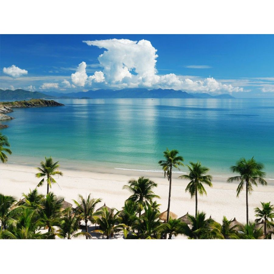 Tropical wall murals scene wall mural wall murals canada tropical wall murals scene wall mural wall murals canada vinyl wall decals amipublicfo Images