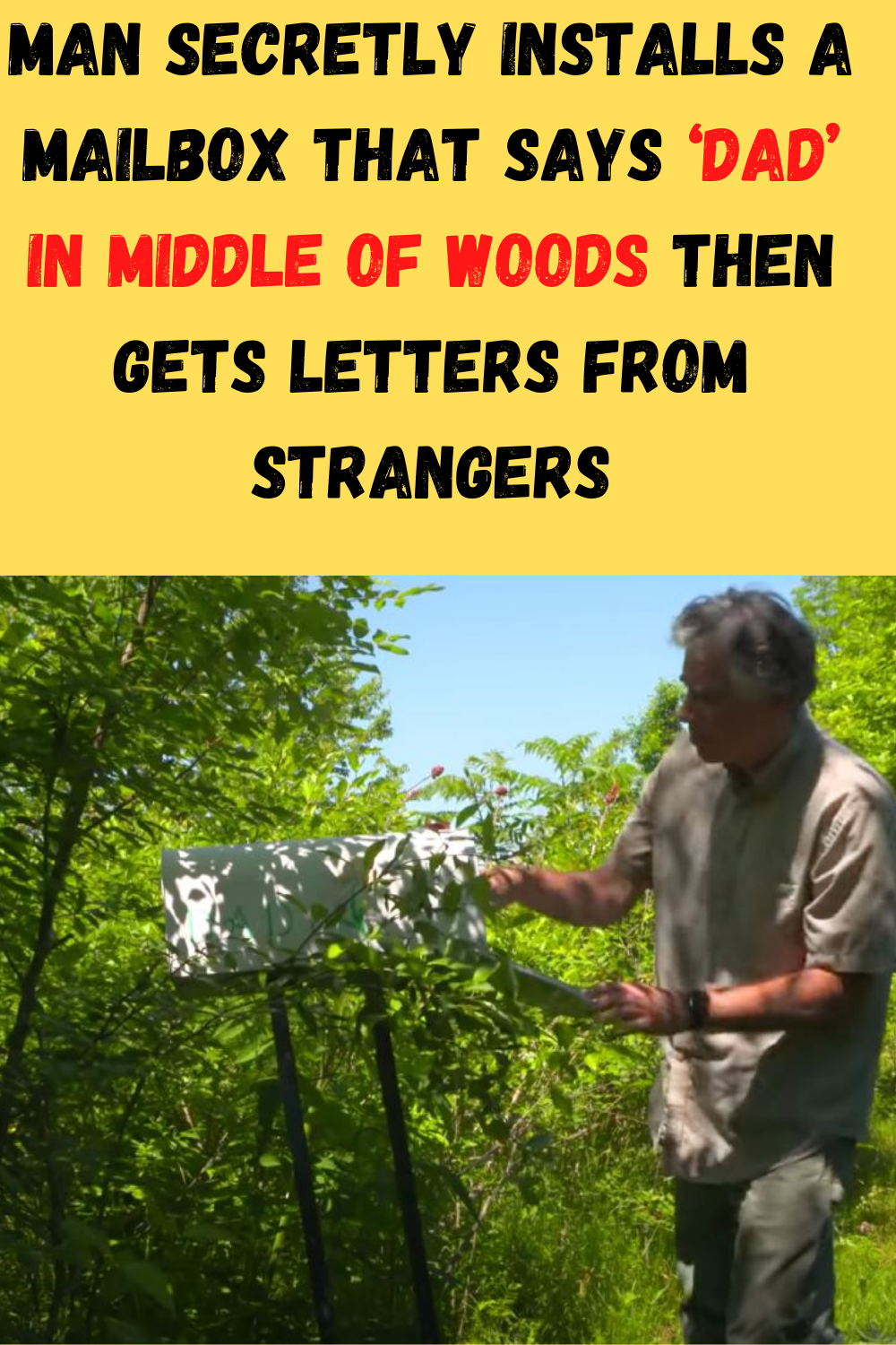 Man Secretly Installs A Mailbox That Says 'Dad' In Middle Of Woods Then Gets Letters From Strangers