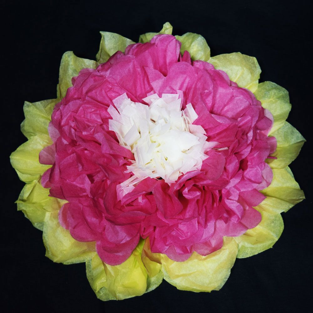 16 Fuchsia Hot Pink Multi Color Tissue Paper Flower Decorations