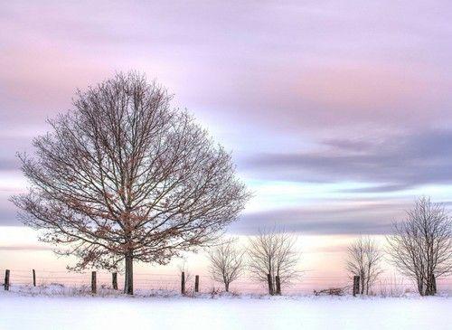 Winter Wallpaper Pastel Sky Desktop Wallpapers Backgrounds Free online winter desktop wallpaper