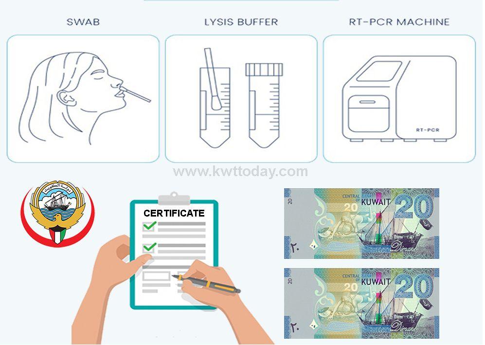 Pin On Kuwait News