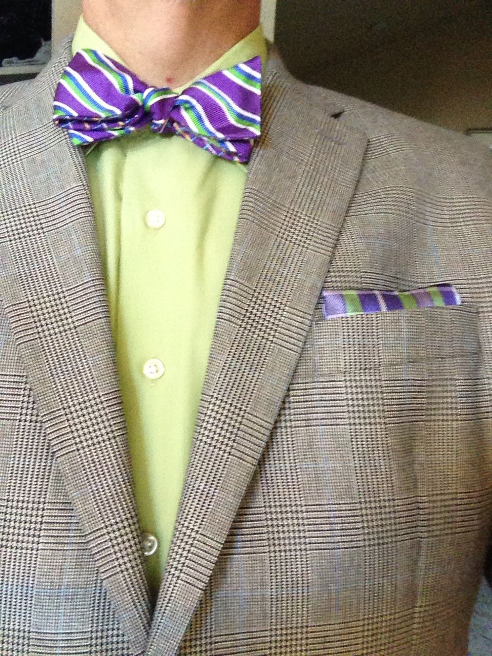 Purple & Green Bow Tie