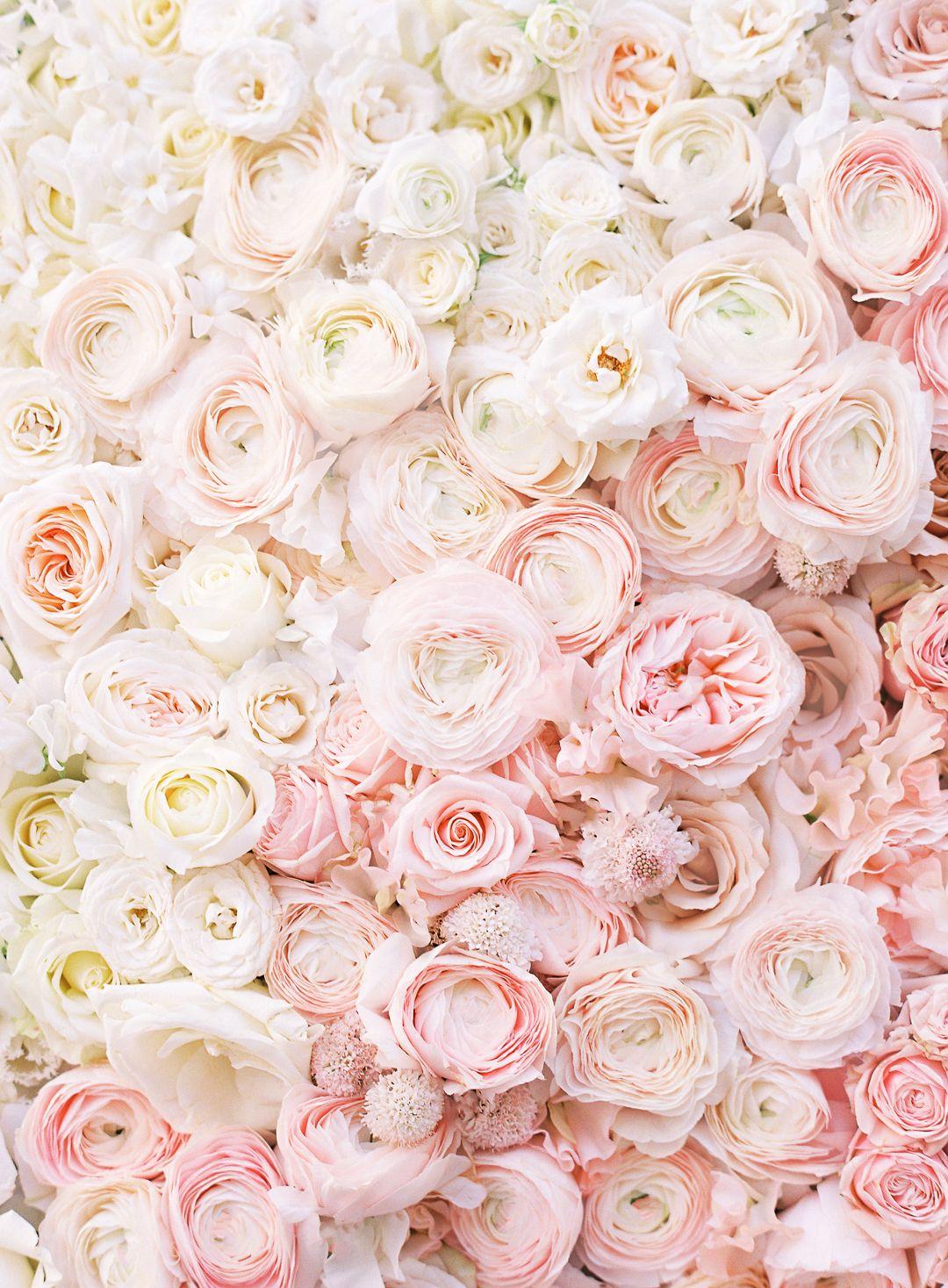 Introducing neutral flower series flower fine art prints and art