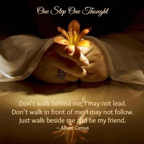 Don't walk behind me; I may not lead. Don't walk in front of me; I may not follow. Just walk beside me and be my friend.  ~ Albert Camus