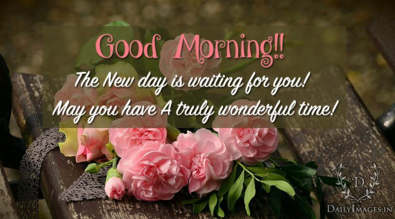 Refreshing Good Morning Quotes: Good Morning: The New Day Is Waiting For You #goodmorning