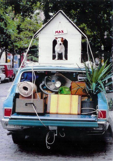 Details about Dog House on Car Funny Goodbye Card