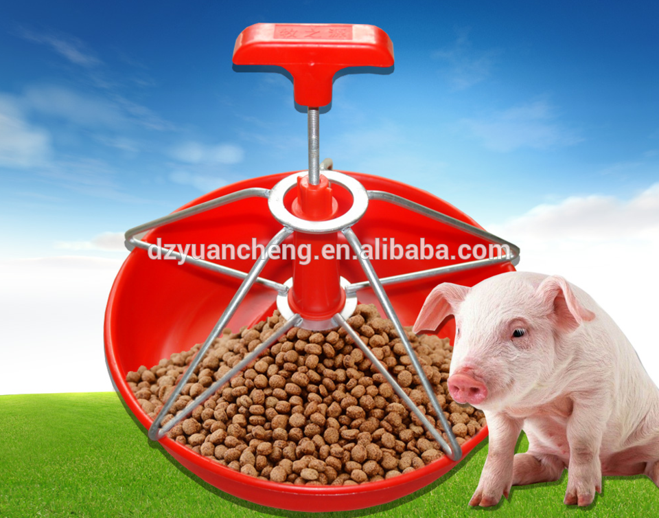 accessoires item guinea totoro frame small container wooden pig feeder grass cage group bowl alibaba aliexpress com on pet equipment rabbit