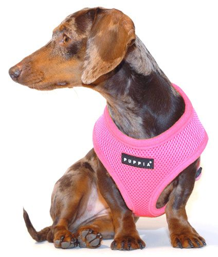 Pretty In Pink Puppia Harness Your Pet Puppies Pretty In Pink