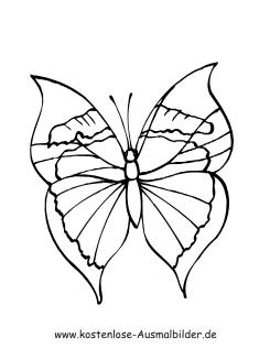Ausmalbild Besonderer Schmetterling Ahornblatt Tattoo Ausmalen Ausmalbilder Schmetterling