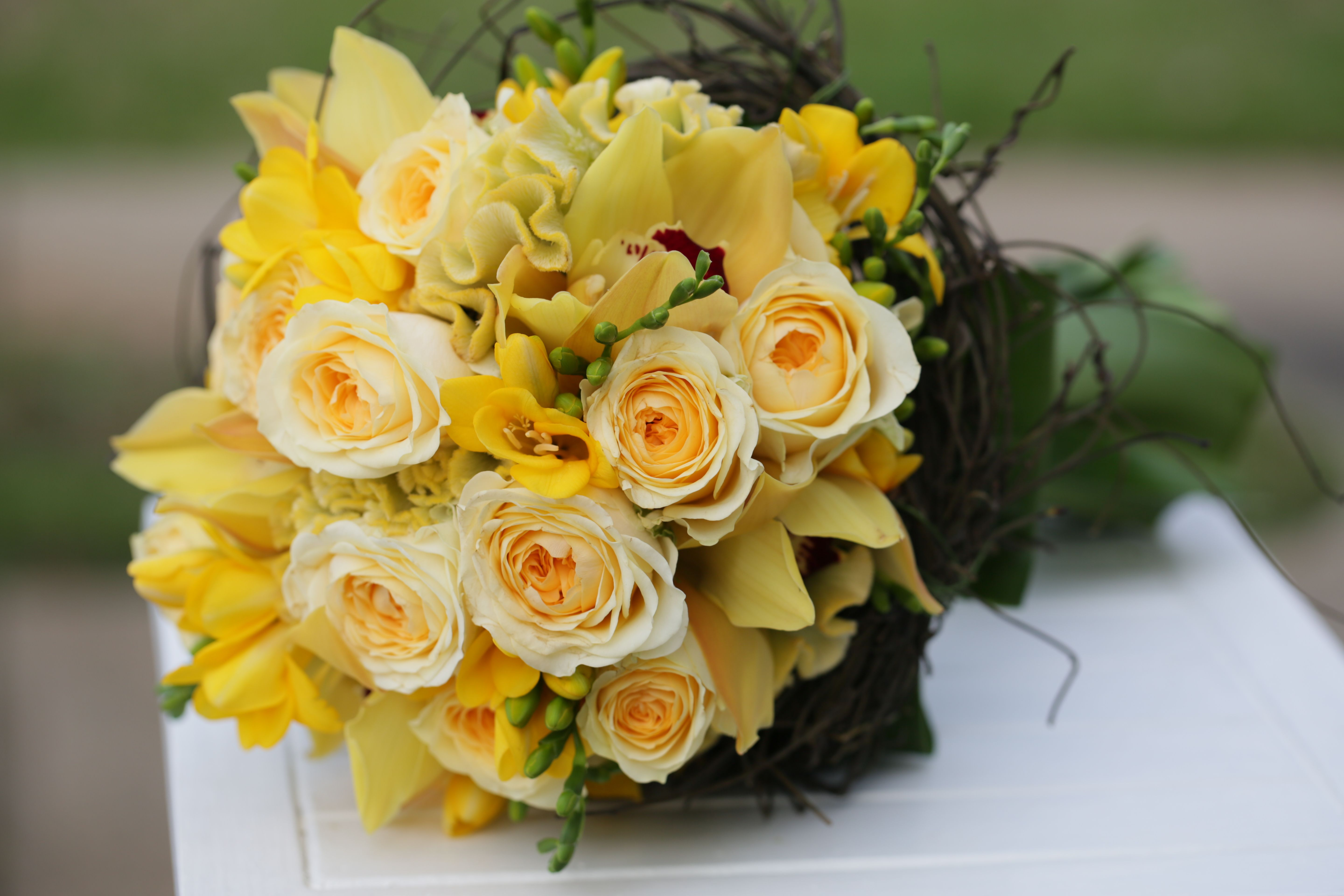 Great Combination Of Yellow Flowers Surrounded By Dodda Vine And