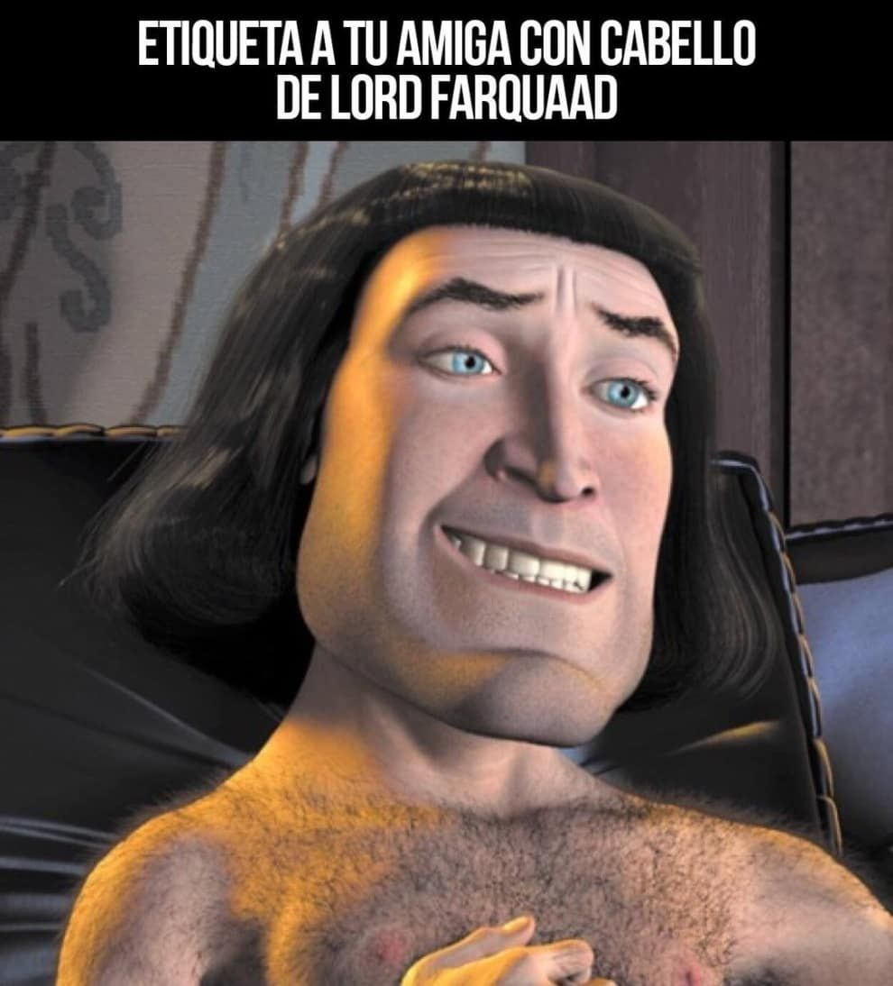 17 Memes De Shrek Que Te Haran Reir Como Un Ogro Memes Shrek Shrek Personajes