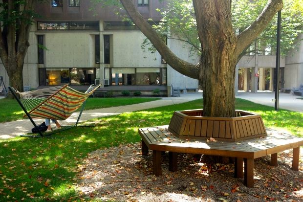 Sweater Weather Studying Outdoor Study Spaces For Fall Campus Landscape Architecture Streetscape Design Outdoor