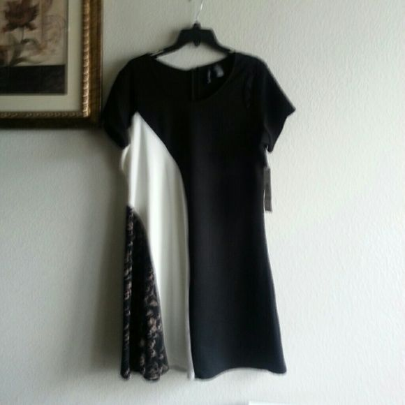 Short shift dress! REDUCED!!! Black and white classic! Madison Leigh Dresses