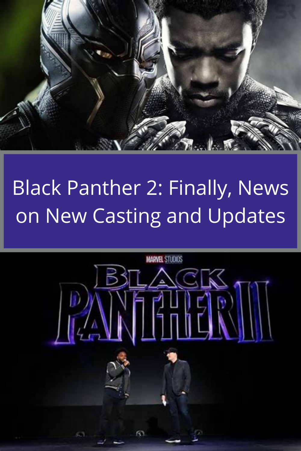 Black Panther 2 Black Panther It Cast Panther
