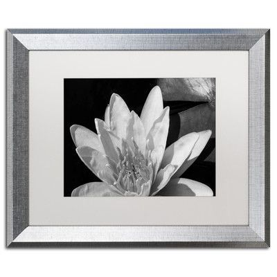 "Latitude Run Water Lily in Black and White Framed Photographic Print Size: 16"" H x 20"" W x 0.5"" D"