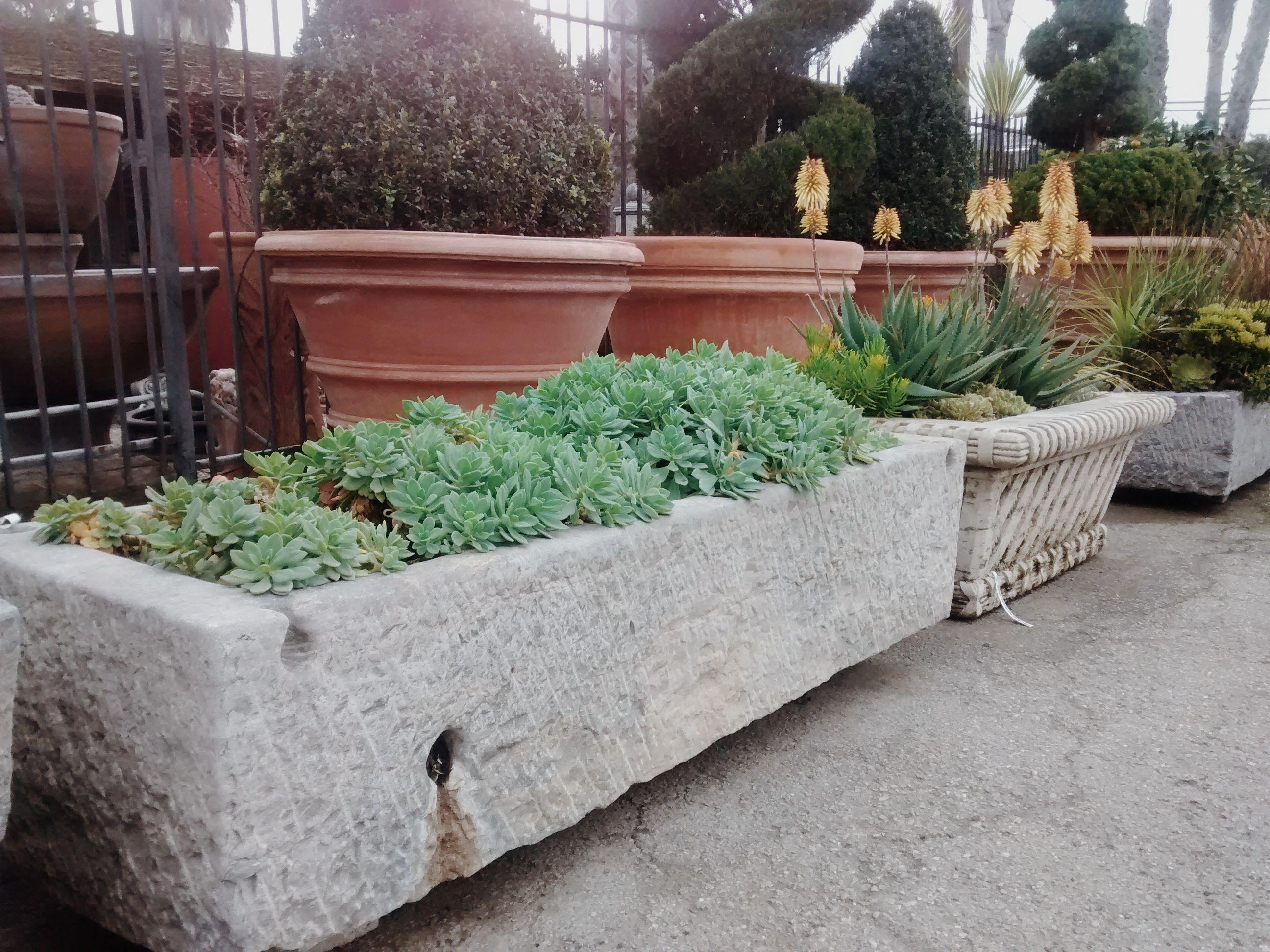 Fullsize Of Herb Garden Trough
