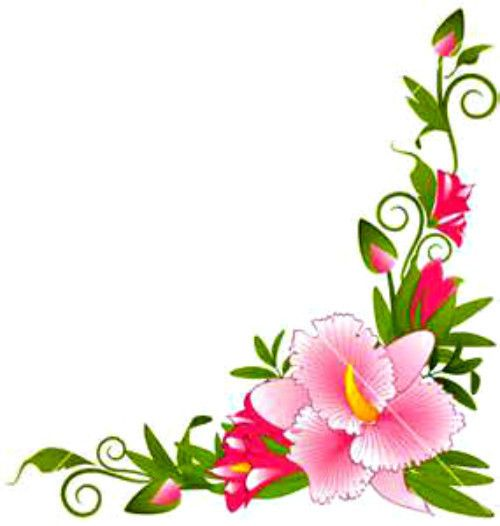 Pin By Alfaith Poblete On B F Goldy: Pin By Alfaith Poblete On Flowery T Flowers Flower