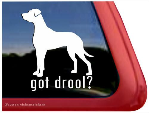 Car Sticker Got Drool Great Dane Great Dane Dane Dog Car