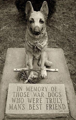 War Dog Memorial Dover Nh War Dogs Dog Memorial Military Dogs