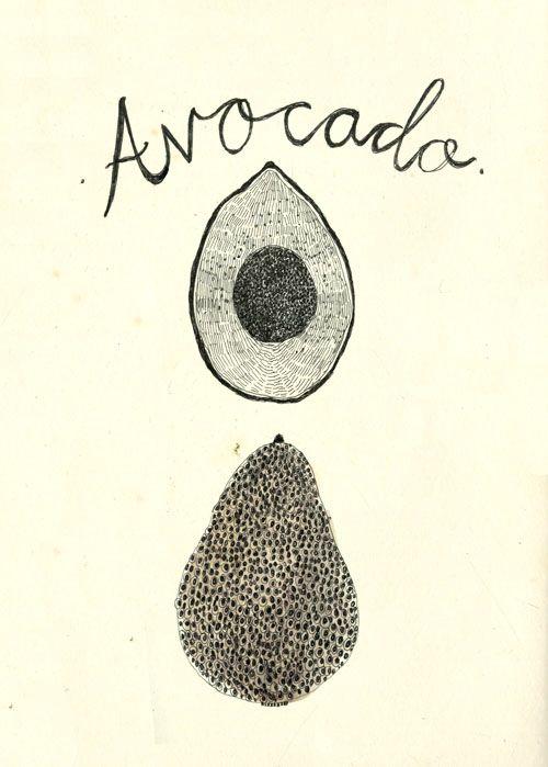 Avocado | Katt Frank