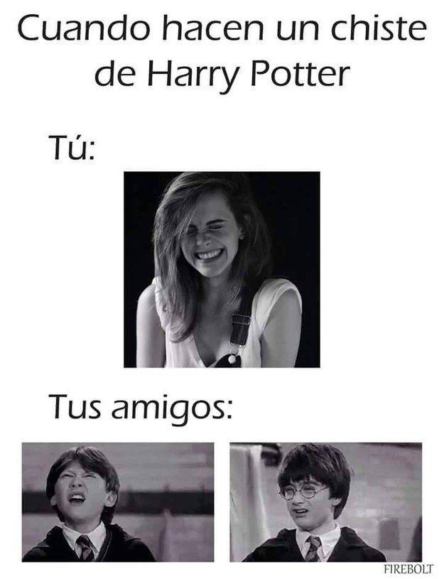 23 Imagenes Que Resumen Lo Que Es Ser Un Potterhead De Corazon Libros De Harry Potter Peliculas De Harry Potter Memes De Harry Potter