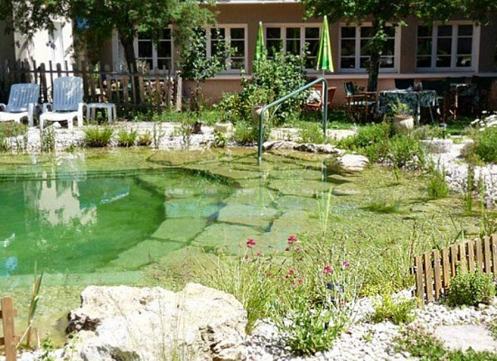 Natural Pool  Your Pool Looks Like A Natural Pond Chemical Free Water Garden  And Swimming Pool. The Plant Portion, Or Regeneration Zone, Is Separated  From ...