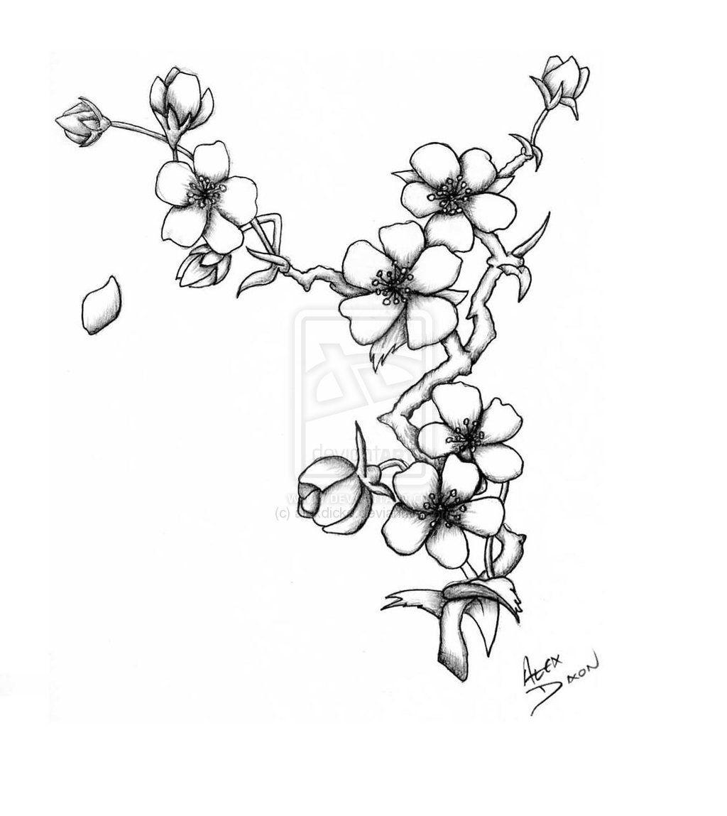 Http Th00 Deviantart Net Fs41 Pre I 2009 052 D 3 Blumenzeichnung Bluten Tattoo Baume Zeichnen