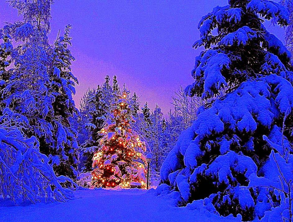 Winter Holiday Scenes Wallpaper Best Free HD Wallpaper