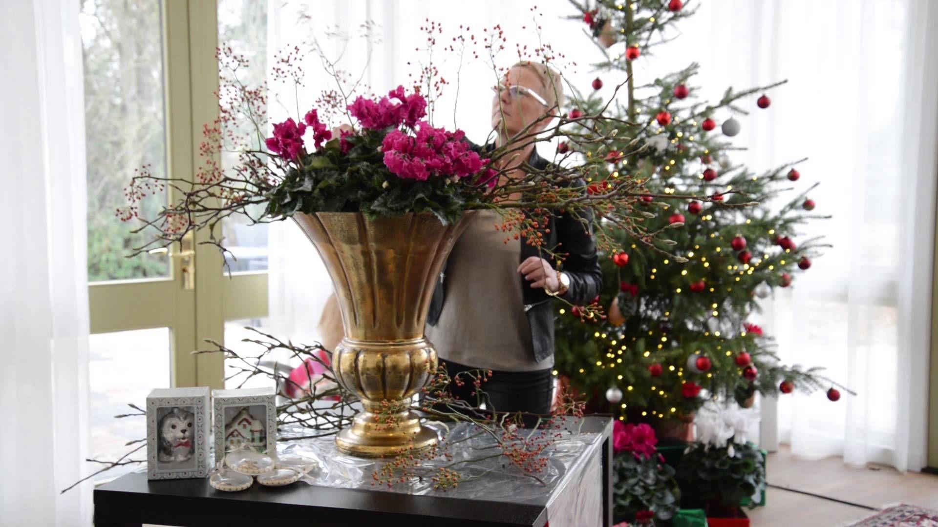 Christmas With Cyclamen Merengue Holiday Decor Christmas Beautiful Decor