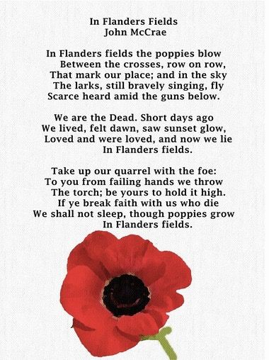 Pin By Ashley On Holidays Other Than Xmas Flanders Field Remembrance Day Poems Remembrance Day Photos