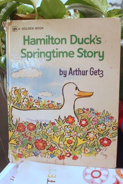 Hamilton ducks springtime story